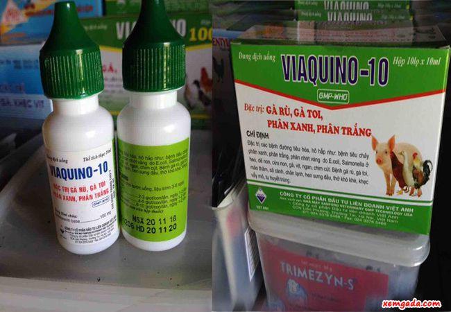 thuốc trị bệnh crd ở gà, thuốc trị bệnh ort ở gà, bệnh hô hấp ở gà, CCRD, bệnh toi gà,