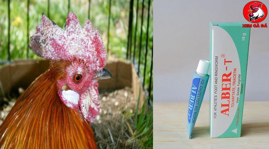 Thuốc trị gà bị lác mặt